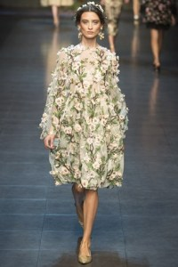 http://www.vogue.co.uk/fashion/spring-summer-2014/ready-to-wear/dolce-and-gabbana