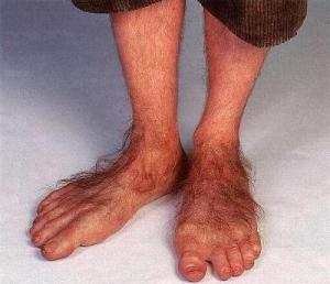 http://yeoldenewsoutlet.files.wordpress.com/2013/02/hobbit-feet1.jpg
